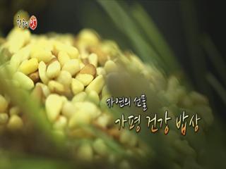 [한국의 맛] - 자연의 선물 가평 건강 밥상