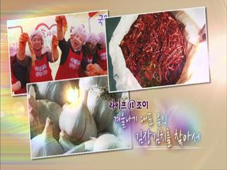 2013년 11월 30일 <황금나침반>