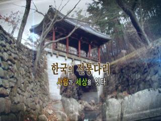 한국사 探 - 한국의 전통다리, 사람과 세상을 잇다