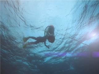 [MYTN 스페셜] 공존의 바다 2부 : 돌고래와 해녀할망