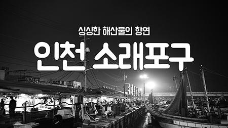 [구석구석 코리아] - 인천 소래포구