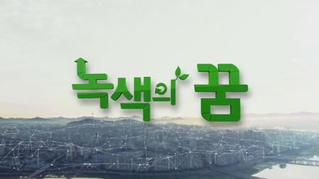[녹색의 꿈] - 벽이 변하고 있다