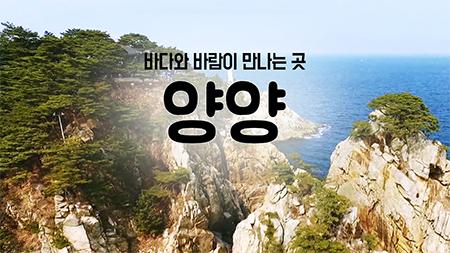 [구석구석 코리아] - 바다와 바람이 만나는 곳, 양양