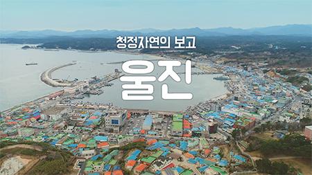 [구석구석 코리아] - 청정자연의 보고, 울진
