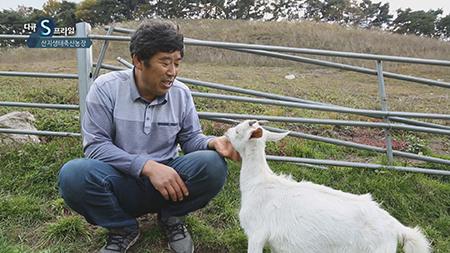 [다큐S프라임] - 한국 축산업의 신동력, 산지생태축산농장