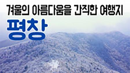 [구석구석 코리아] - 겨울의 아름다움을 간직한 여행지 평창